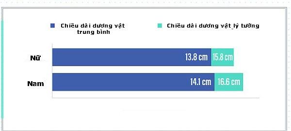 duong-vat-1-144156962